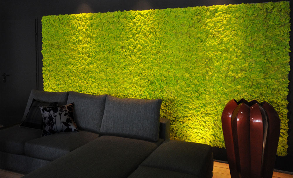 A moss wall in a black room, behind a black corner sofa