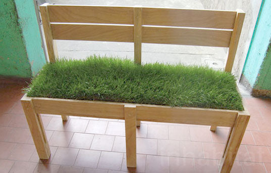 Wooden Bench With Grass As A Seatpad