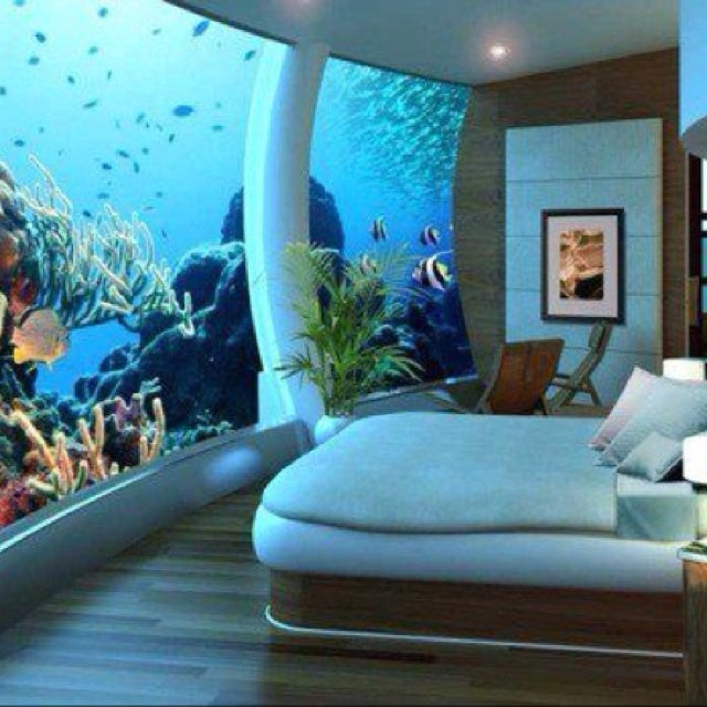 Beautify Your Home Using Fish on home conservatory designs, home walkway designs, home entryway designs, home reception designs, home loft designs, home great room designs, home front designs, home staircase designs, home stairway designs, home beach designs, home wall designs, home garden designs, home dining room designs, home mud room designs, home glass designs, home floor designs, home school designs, home study designs, home building designs, home foyer designs,