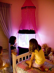 fish-tank-daughters-room