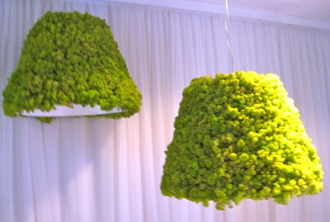 Pendant Lampshades Covered In Green Moss