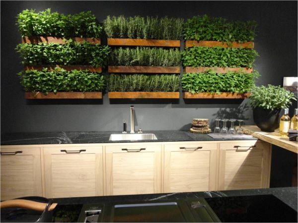 Shelves above kitchen counter tops, which contain rows of herbs growing from within the shelves