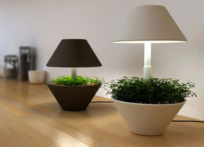Two planters with built in table lamps