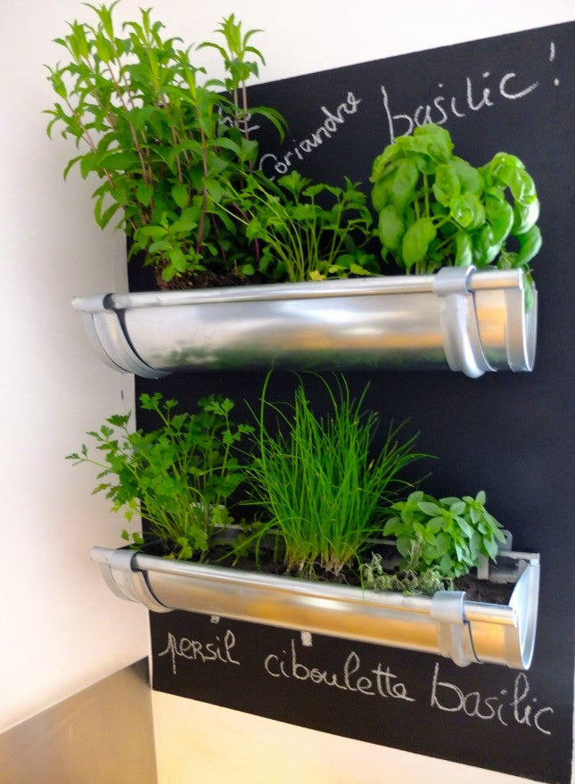Silver planters made from guttering, attached to a black chalkboard