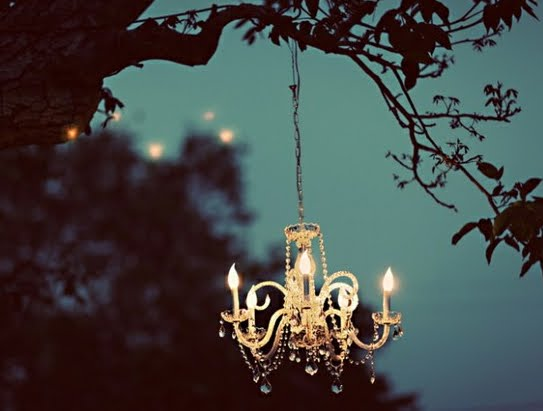 Outdoor chandelier hung from a tree at night time