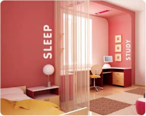 Dark coral pink bedroom separated into two sections, one for sleep and one for study