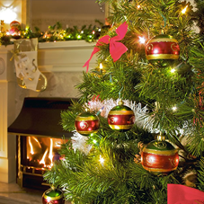 Christmas tree obscuring a fireplace, with green, red and gold baubles