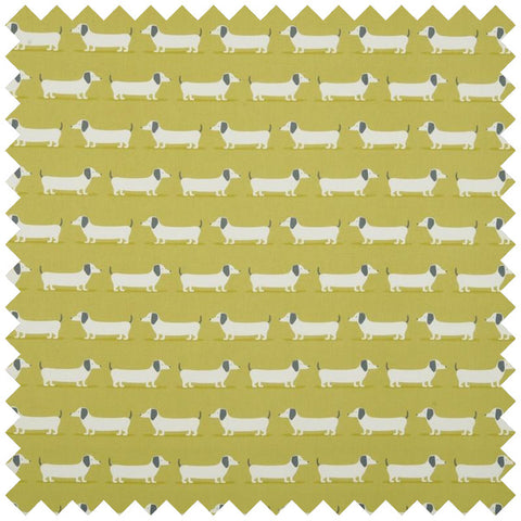 Gold fabric with a sausage dog design