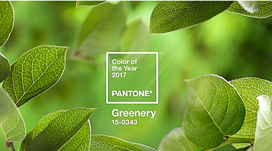 Pantone imagery for greenery colour