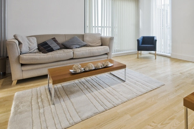 Minimal Looking Living Room, With Dishevelled Beige Sofa And Natural Cream Rug