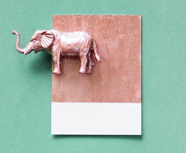 Copper Indian elephant on a light green background