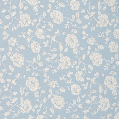 Light blue fabric swatch with cream flowers
