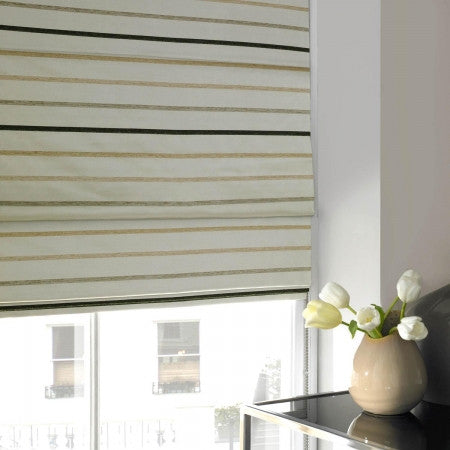 Striped Window Blinds