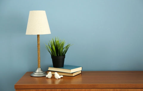 White Lampshade On Twine Covered Lamp, Plant And Light Blue Background
