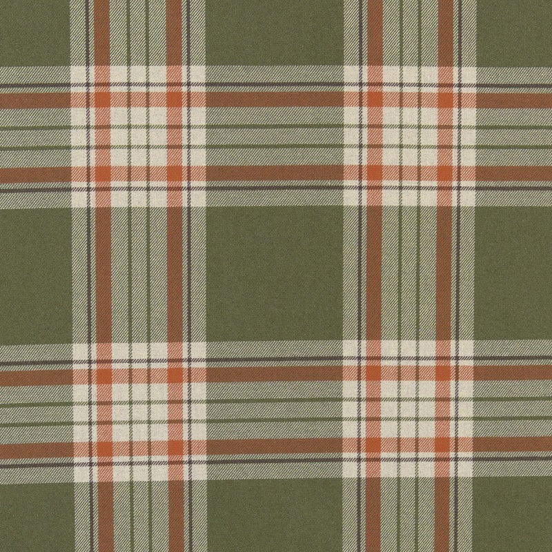 Clarke And Clarke Fabrics Glenmore Curtain Fabric Olive Picture