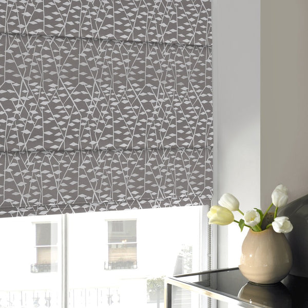 Illinios Roman Blind Mouse