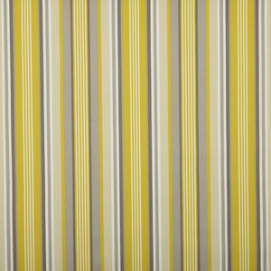 Stellar Stripe Curtain Fabric Ochre