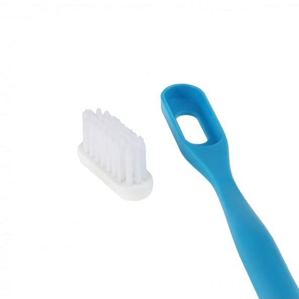 Replacement Heads for Bioplastic Toothbrush (3-Pack)