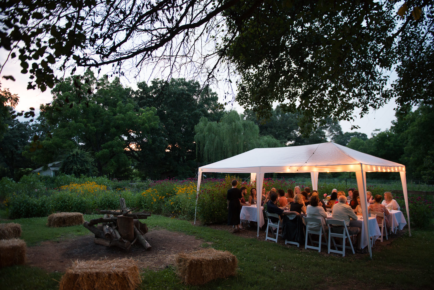 Nourish's Avant Garden Party on June 2nd at Bell's Best Berries