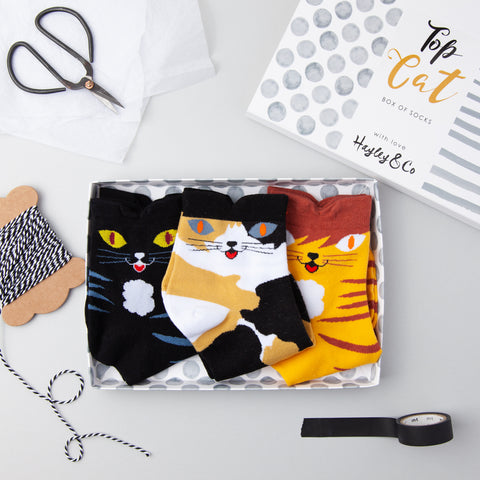 Top Cat Box of Socks