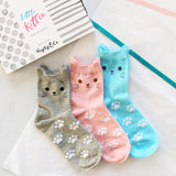 Cute Kitten Box of Socks