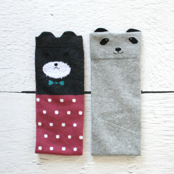 Little Bear Box of Knee High Kids Socks