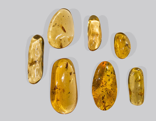 Copal is not amber