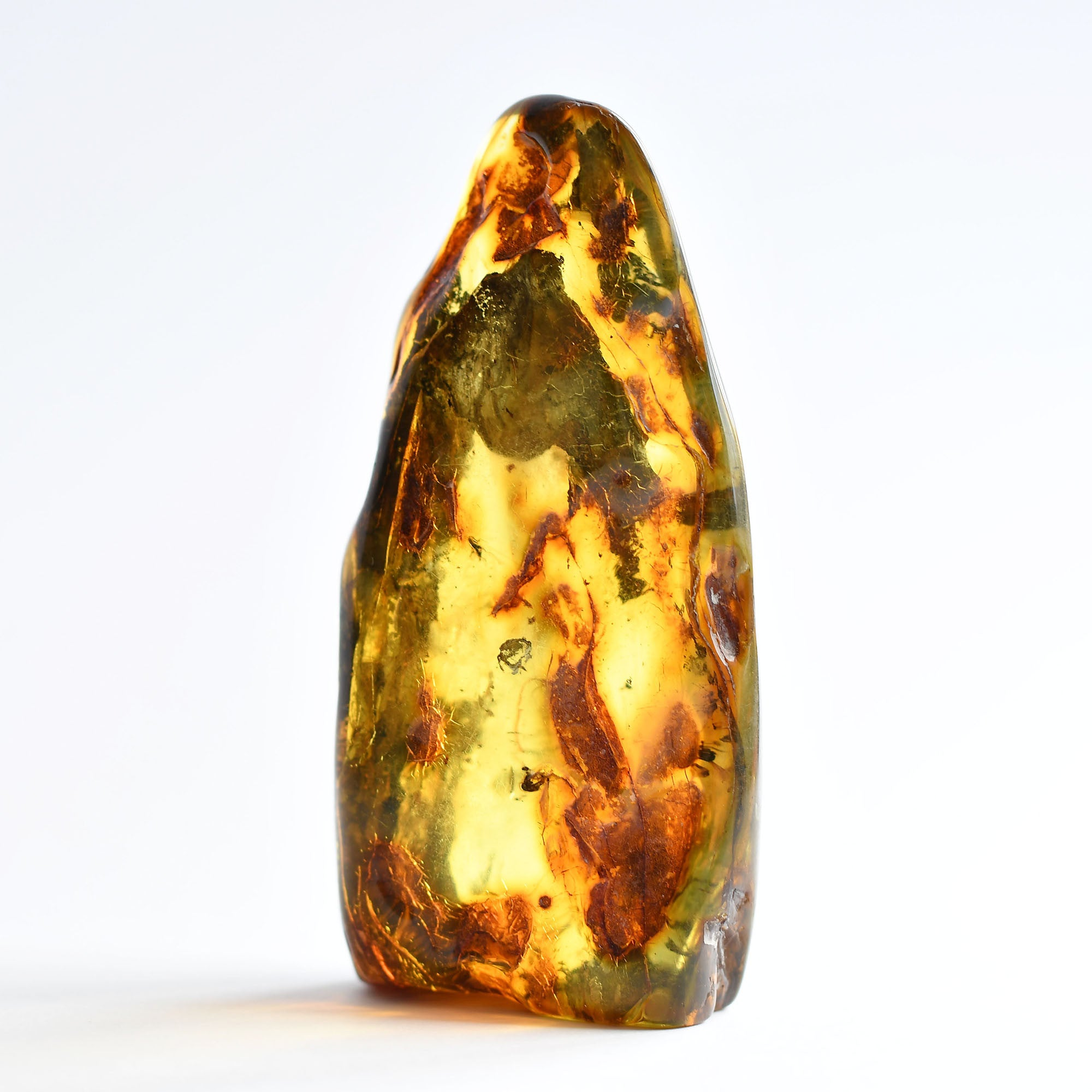 Transparent amber with an insect