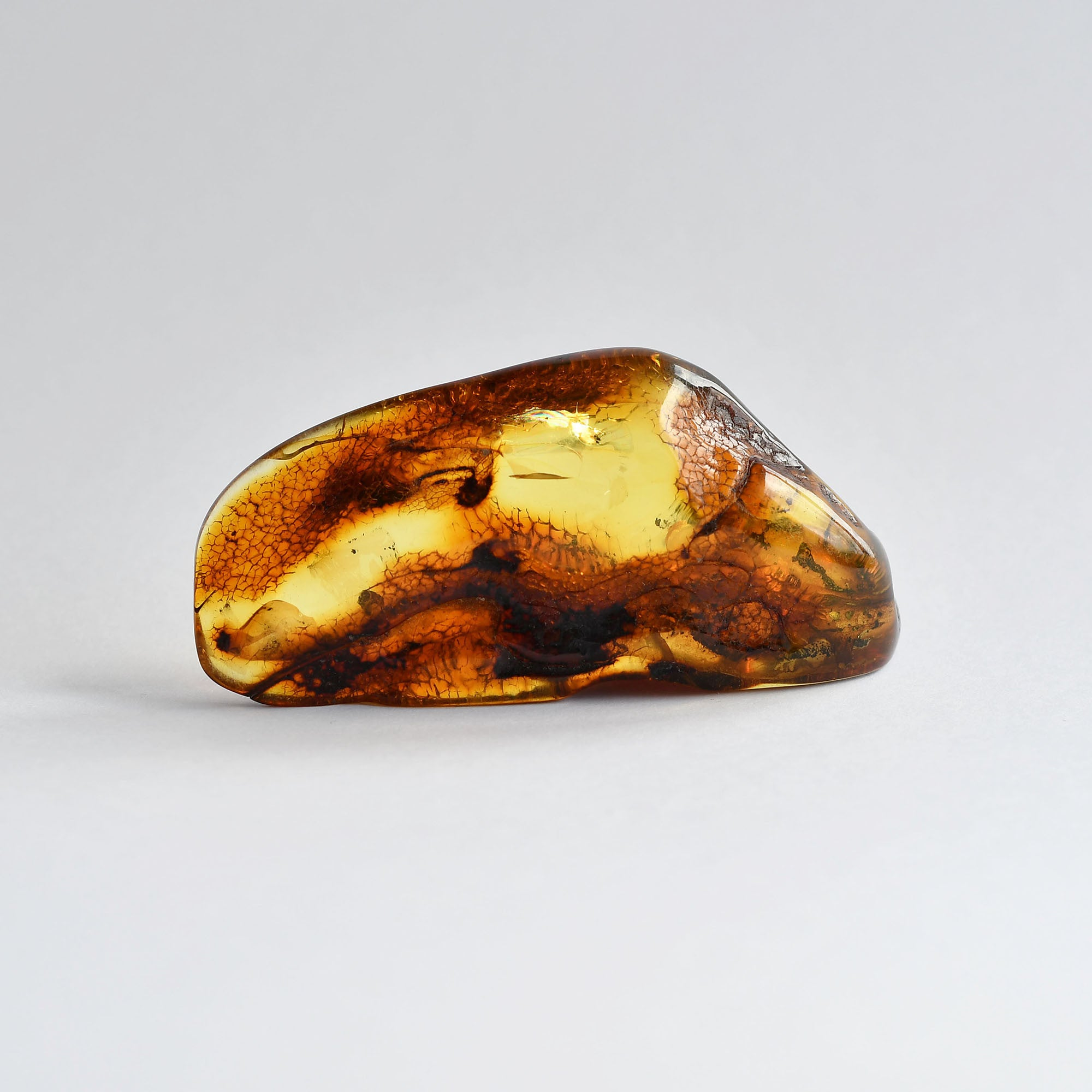 Transparent amber stone with an insect