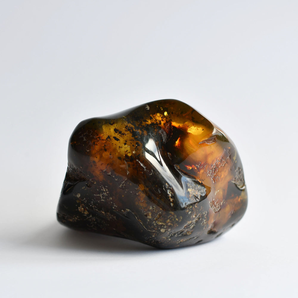 Black amber with pieces of prehistoric soil