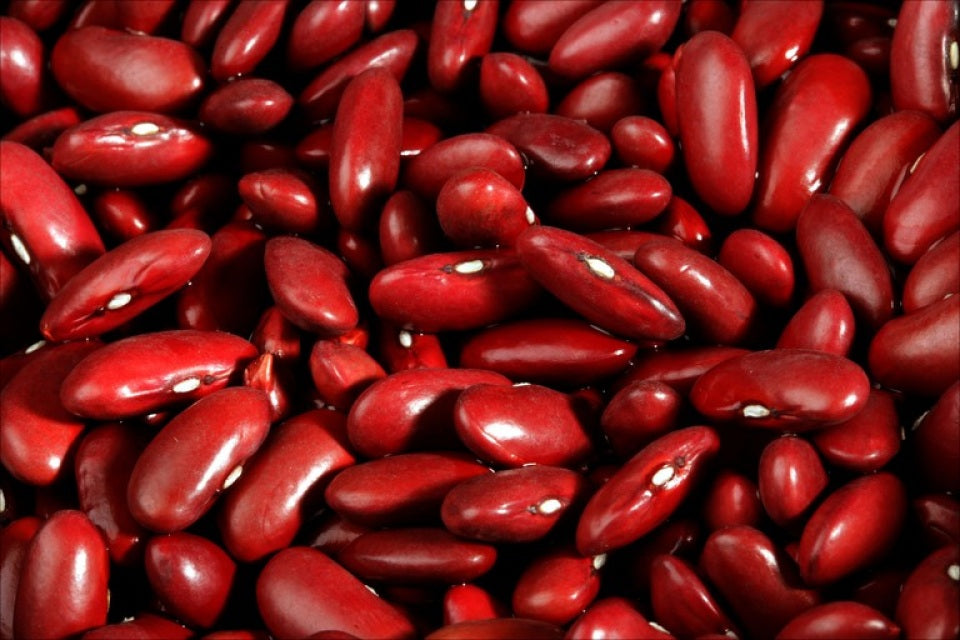 Dark Red Kidney Beans: 25lbs