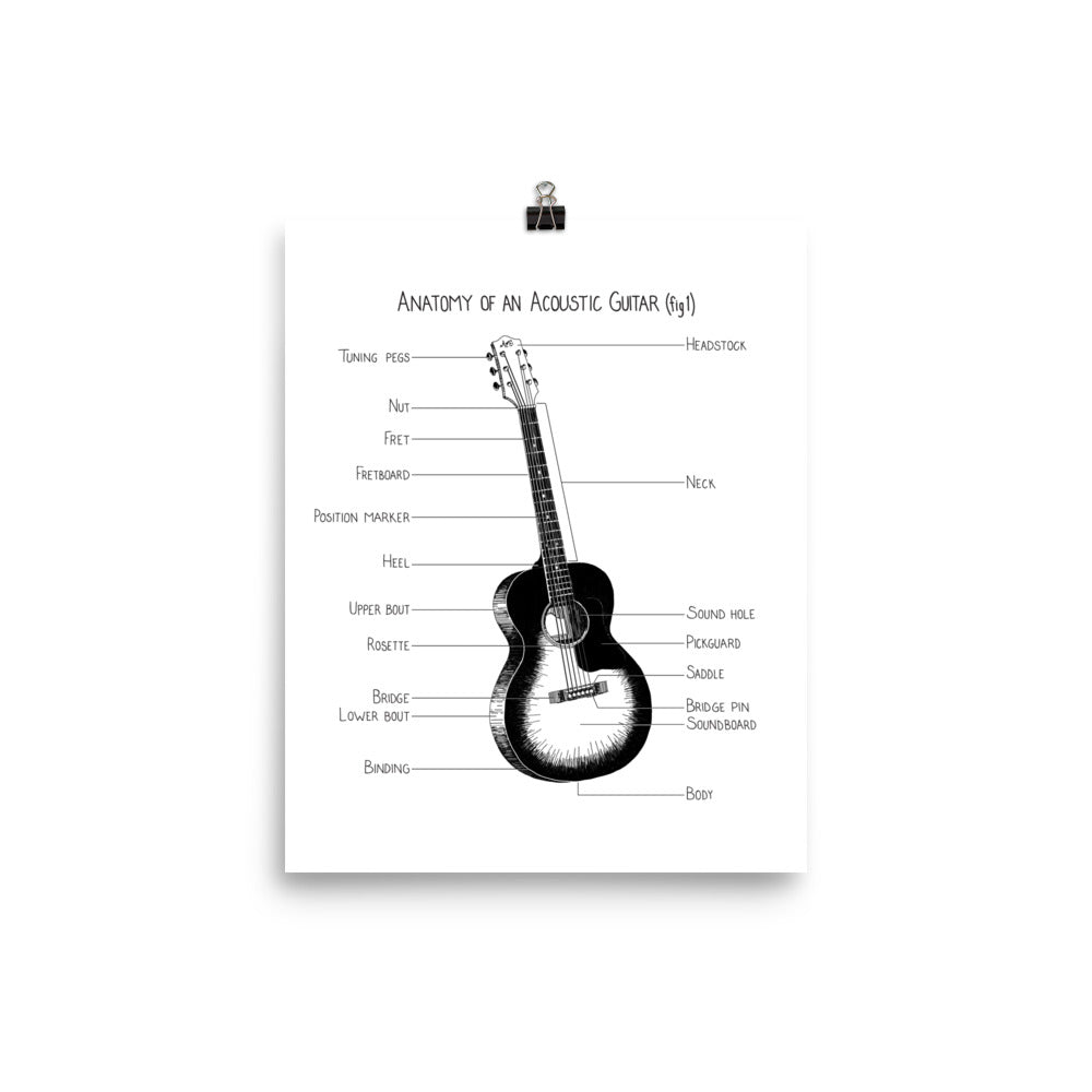 Anatomy of an Acoustic Guitar (fig 1) – Anatomy Of Everything