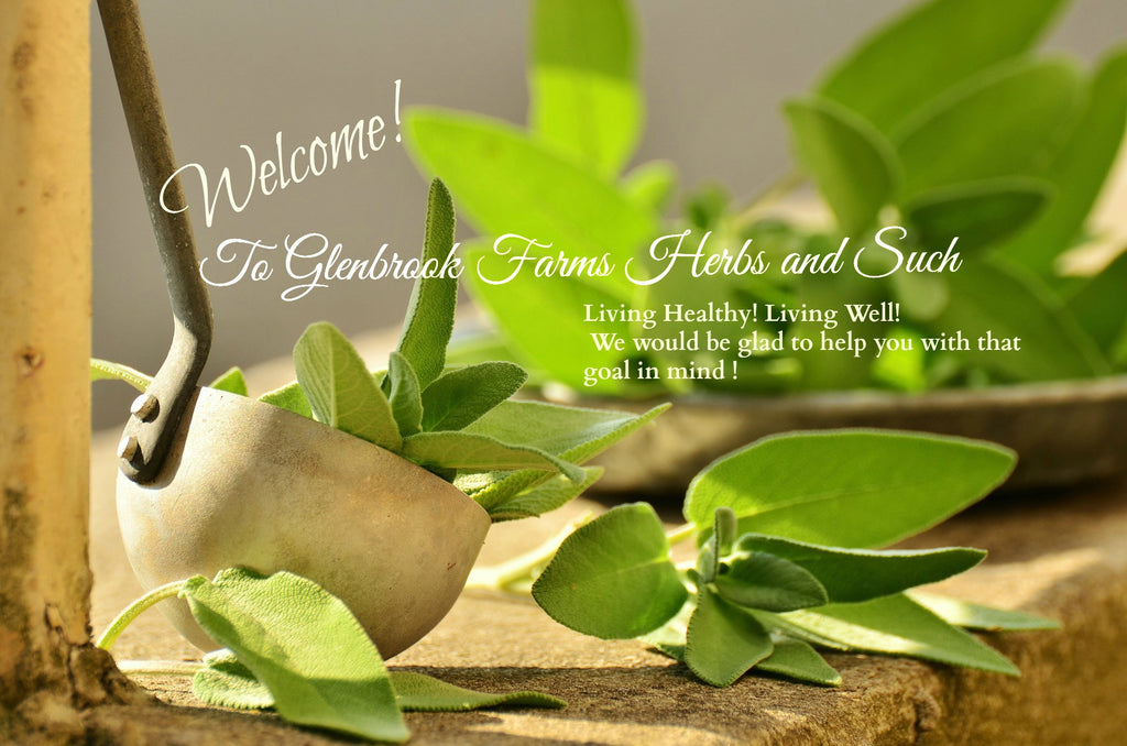 picture of sage with words Glenbrook Farms Herbs and Such Living healthy, Living well. We will be glad to help you with that goal.