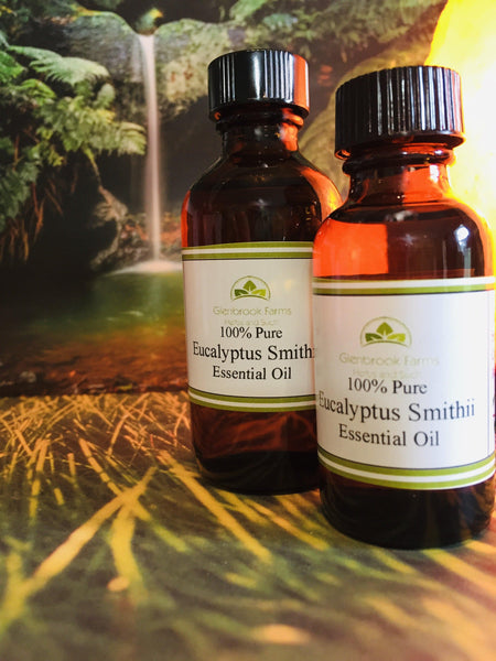 Eucalyptus Smithii essential oil in bottles