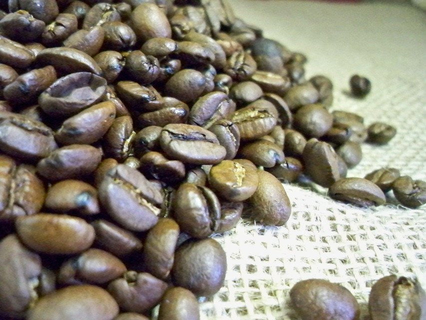 Bali Blue Moon Certified Organic Fair Trade Coffee Beans from glenbrookfarm.com