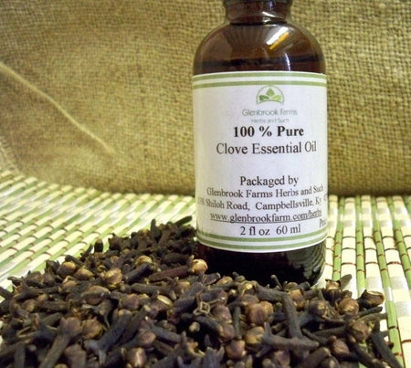 Clove Essential Oil from Glenbroook Farm herbs and such