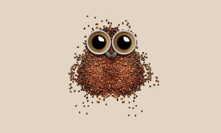 coffee beans with eyes