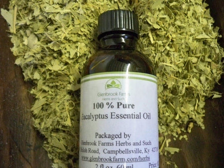 Eucalyptus Essential oil from glenbrookfarm.com