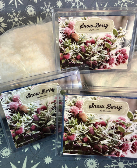 snow berry wax melts