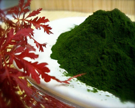 Spirulina Powder,Blue Green Algae