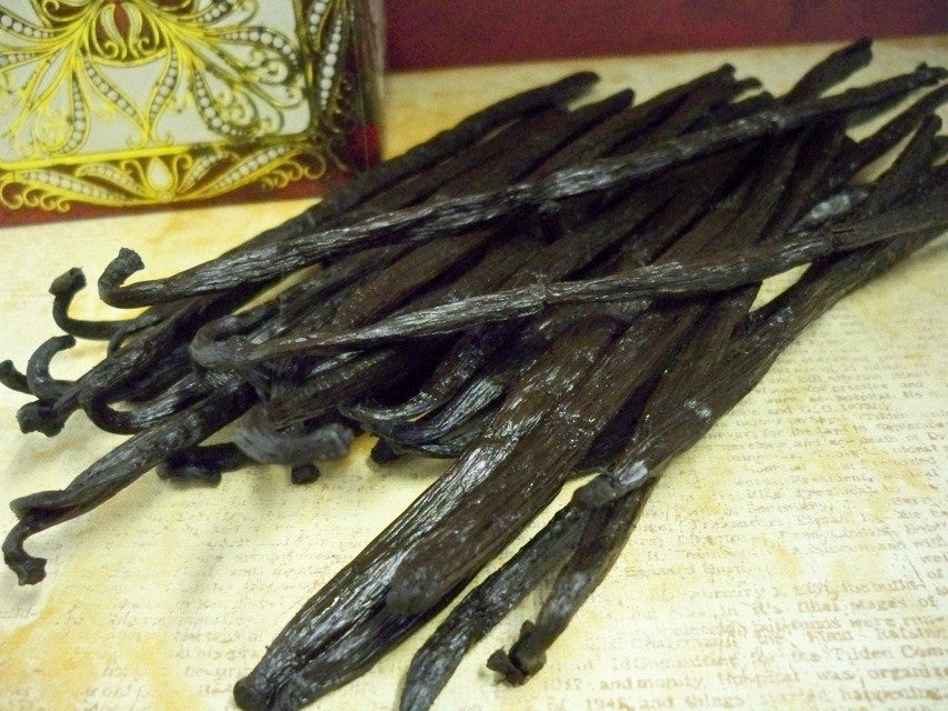 vanilla beans from Glenbrook Farms Herbs and Such