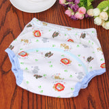 Baby Diaper Washable & Reusable