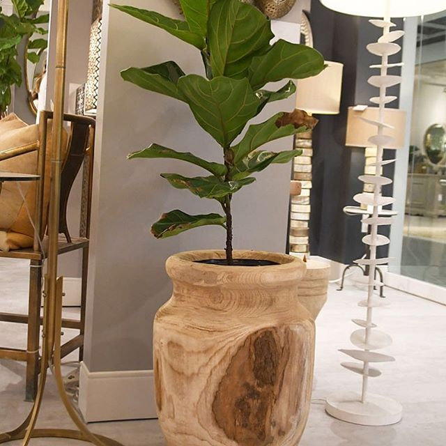 Jamie Young topanga vase wood planter container