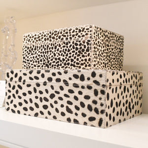 made goods Bryce box set dalmation
