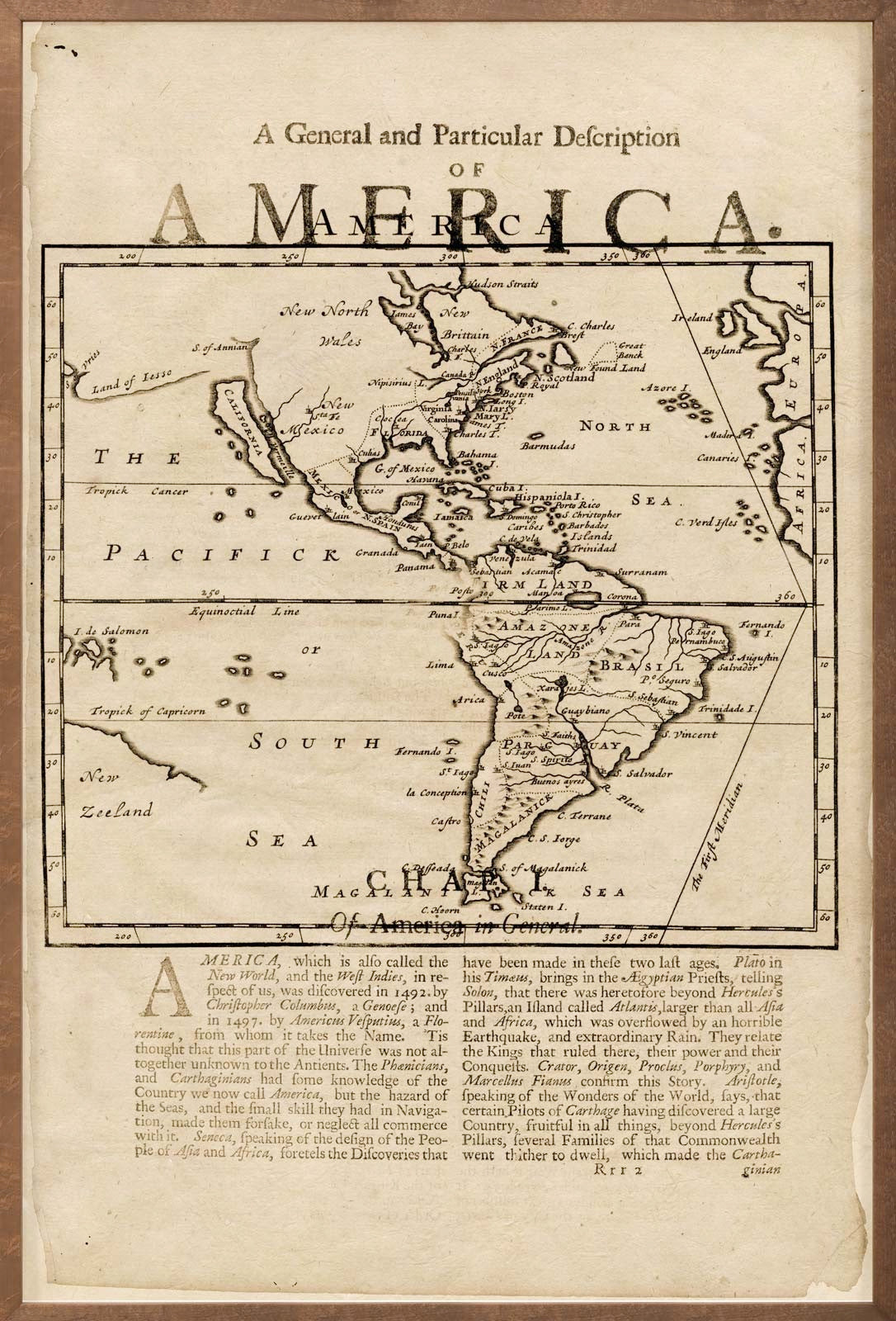 natural curiosities map of America wall art