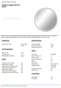 arteriors lesley mirror white wash tearsheet