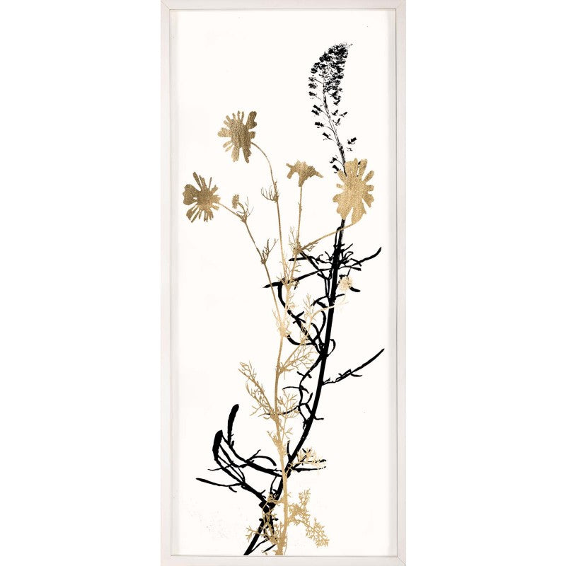 natural curiosities herbarium series 4 black and white
