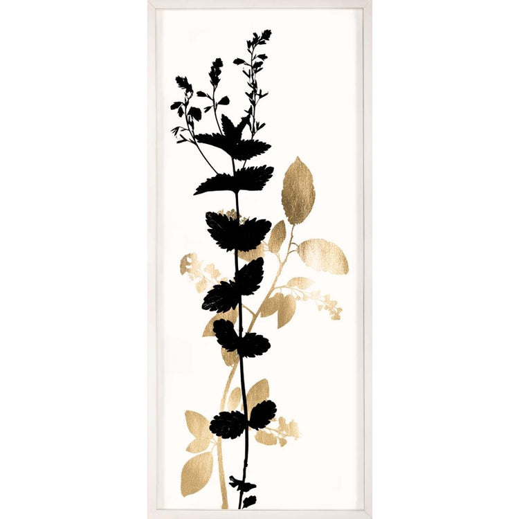 natural curiosities black and white herbarium series 1