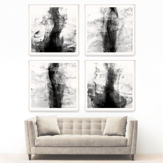 natural curiosities black and white ink artwork set of 4
