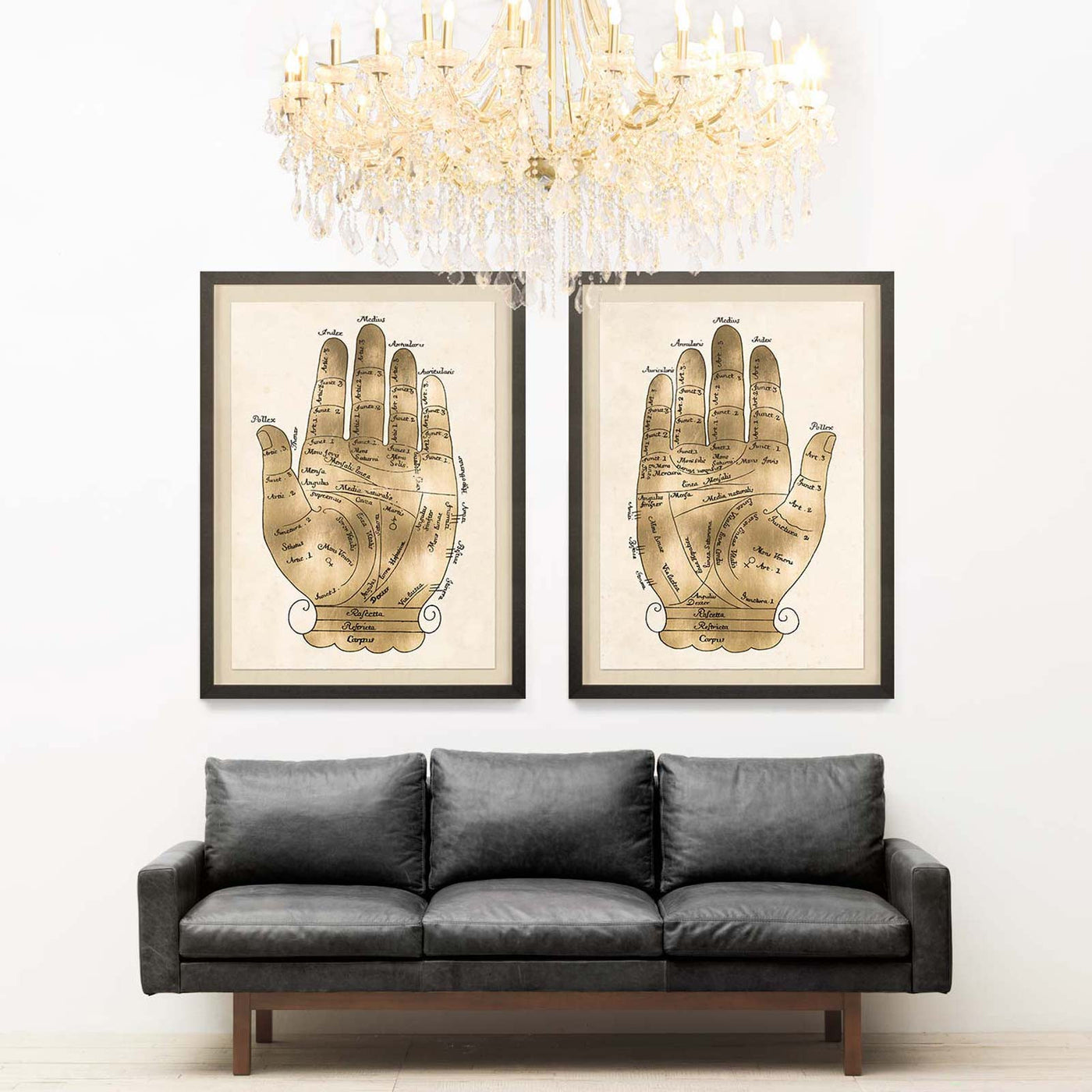 Natural Curiosities Gallicus Hands 1 Gold Leaf Artwork Room View